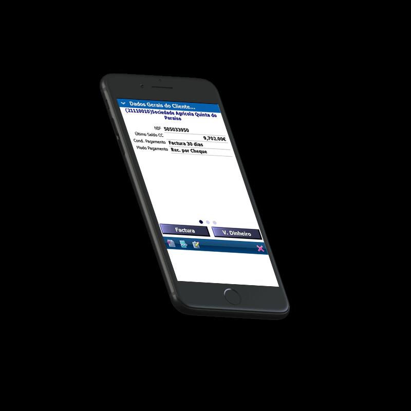 Primavera Software - Mobile Business